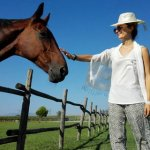 Rüyada atın başını okşamak