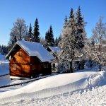 Rüyada kış mevsimini görmek